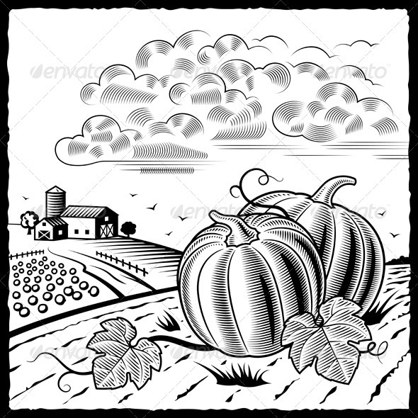 Landscape With Pumpkins Black And White - Nature Conceptual