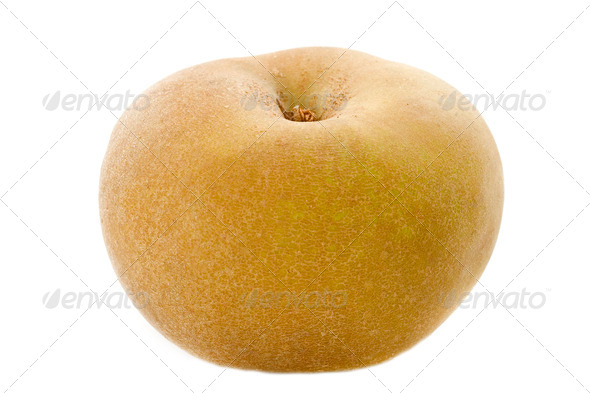 Golden russet apple - Stock Photo - Images