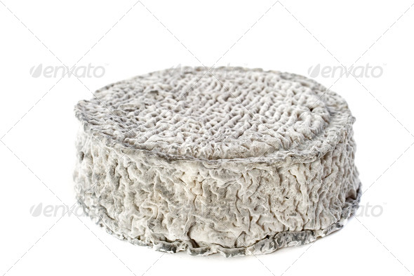 goat cheese - Stock Photo - Images