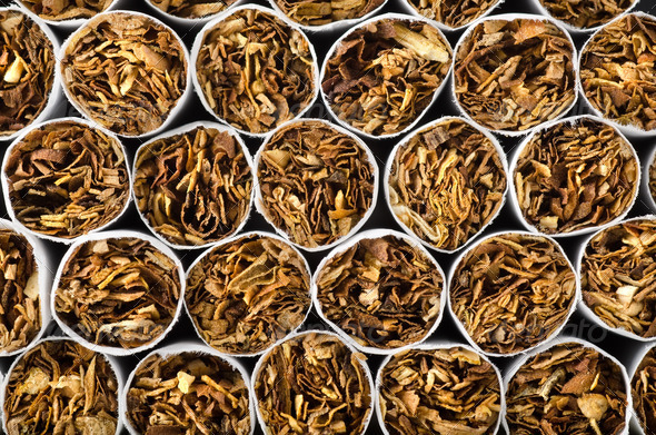 Close-up of cigarettes - Stock Photo - Images