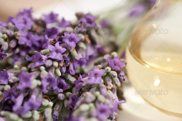 Lavender aromatherapy - Stock Photo - Images