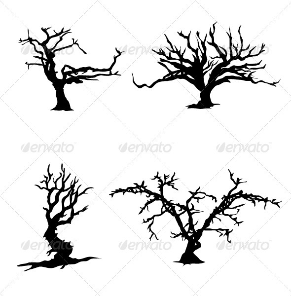 Trees witn no leaves silhouettes - Flowers & Plants Nature