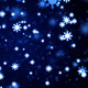 Mid-Winter Snow Fall - VideoHive Item for Sale
