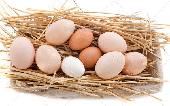 fresh eggs - Stock Photo - Images