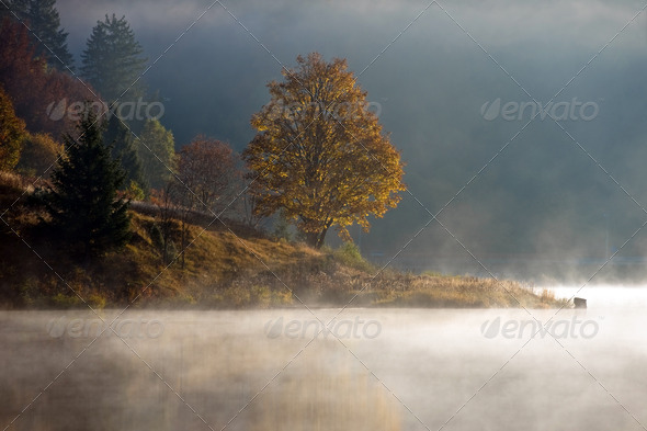Fall colors - Stock Photo - Images
