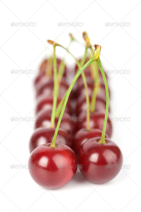 ripe cherries isolated - Stock Photo - Images