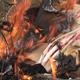 Burning Trash - VideoHive Item for Sale