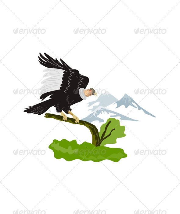 Vulture Buzzard Bird Perch on Branch - Animals Characters
