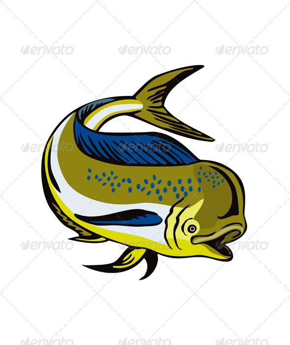Dorado Dolphin Fsh Mahi-Mahi  - Animals Characters