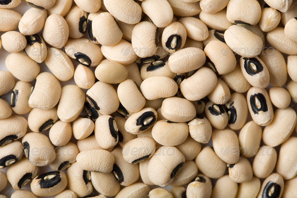 white haricot beans background - Stock Photo - Images