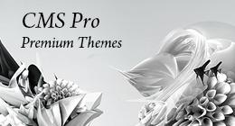 CMS Pro themes