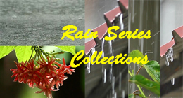Rain Series Collection