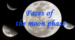 Faces of the Moon Phases
