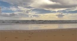 Nature - Oceans