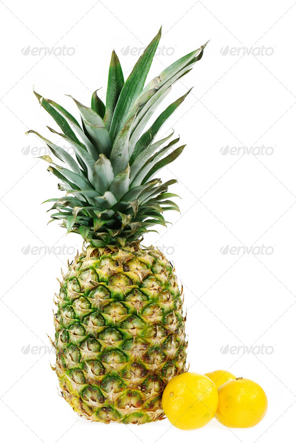 Tropical Fruits - Stock Photo - Images