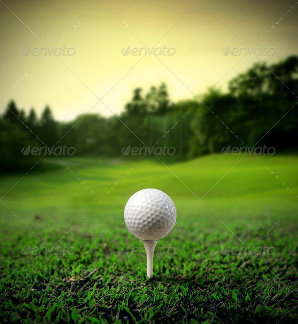 Golf court - Stock Photo - Images