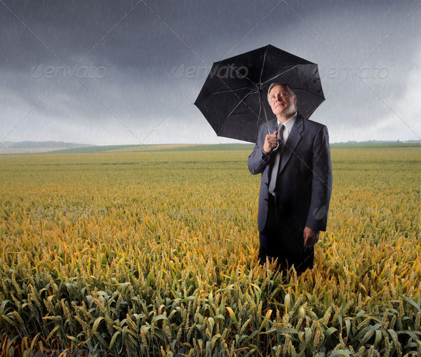 Bad times for agriculture - Stock Photo - Images