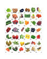 Mural of fruits and vegetables - PhotoDune Item for Sale