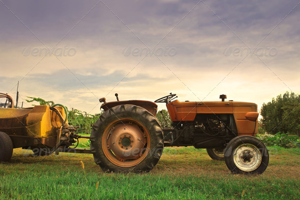 Agriculture - Stock Photo - Images