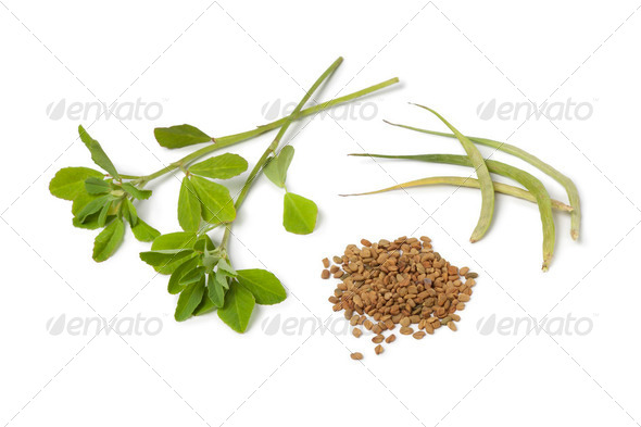 Fenugreek leaves,pods and seeds - Stock Photo - Images