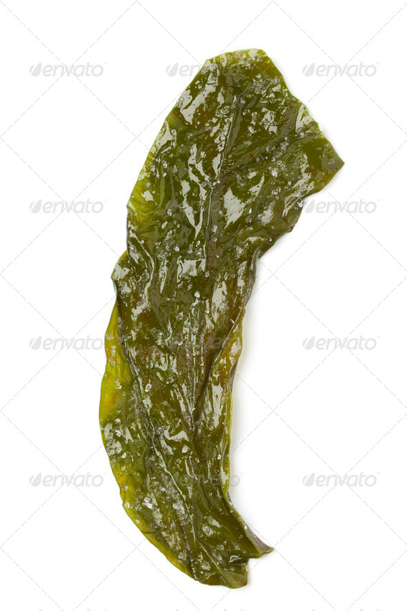 Kombu Breton seaweed - Stock Photo - Images