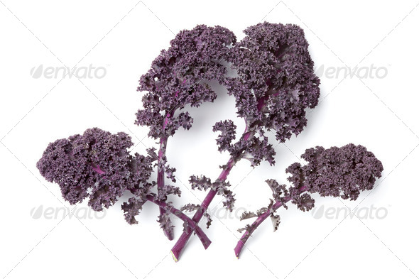 Red curly kale leaves - Stock Photo - Images