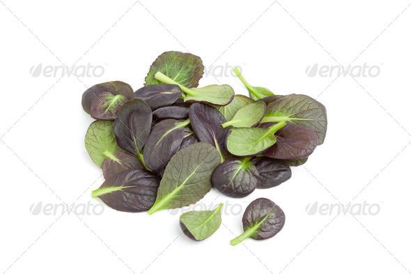 Fresh tatsoi leaves - Stock Photo - Images