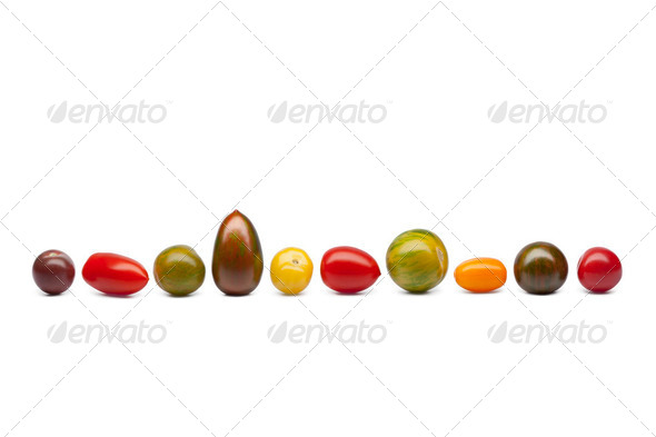 Wild tomatoes in a row - Stock Photo - Images