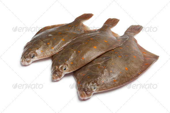Fresh raw plaice fishes - Stock Photo - Images