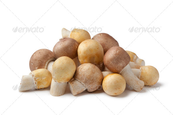 Fresh Almond and Horse Mushrooms - Stock Photo - Images