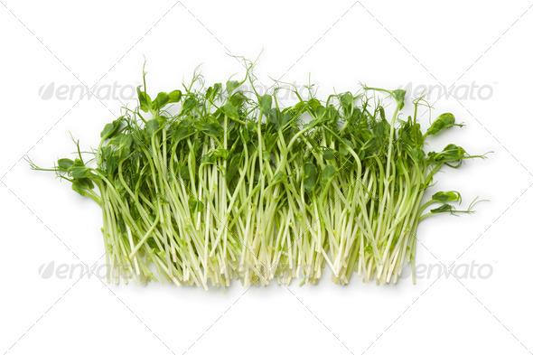Fresh pea shoots - Stock Photo - Images