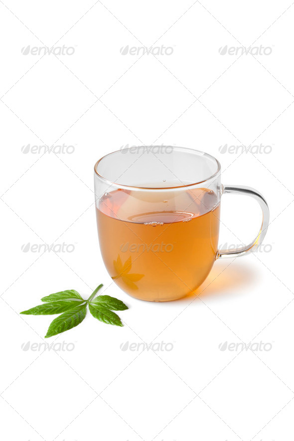 Cup of herbal tea with jiaogulan herb - Stock Photo - Images