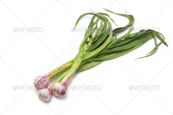 Fresh French garlic - Stock Photo - Images