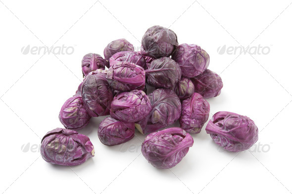 Red Brussels sprouts - Stock Photo - Images