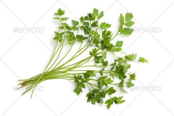 Fresh flat-leave parsley - Stock Photo - Images