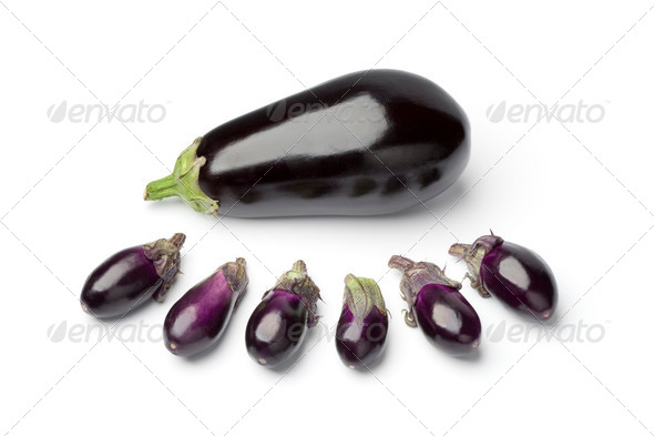 Baby eggplants and a large one - Stock Photo - Images