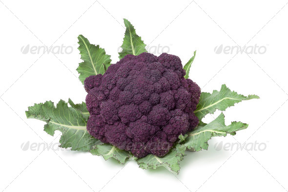 Fresh purple broccoli - Stock Photo - Images