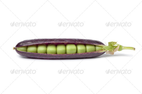 Fresh peas in purple pod - Stock Photo - Images