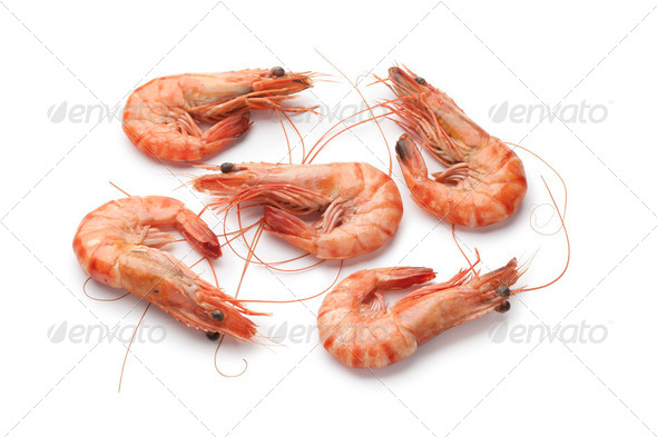 Whole cooked shrimps - Stock Photo - Images
