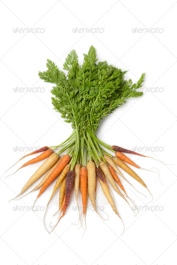 Fresh carrots in different colors - Stock Photo - Images