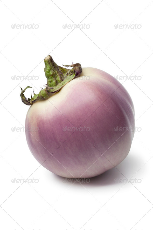 Purpura eggplant - Stock Photo - Images