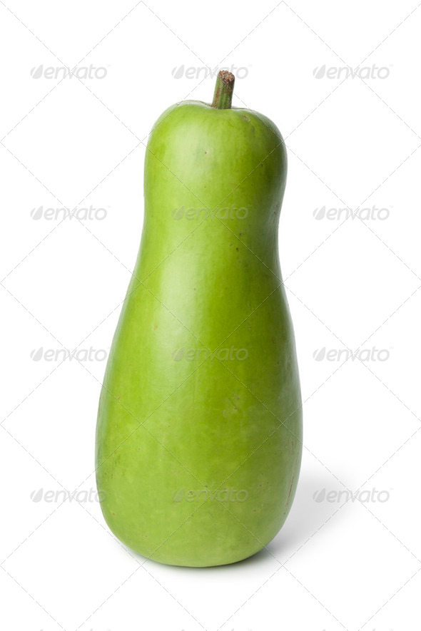Whole single bottle gourd - Stock Photo - Images