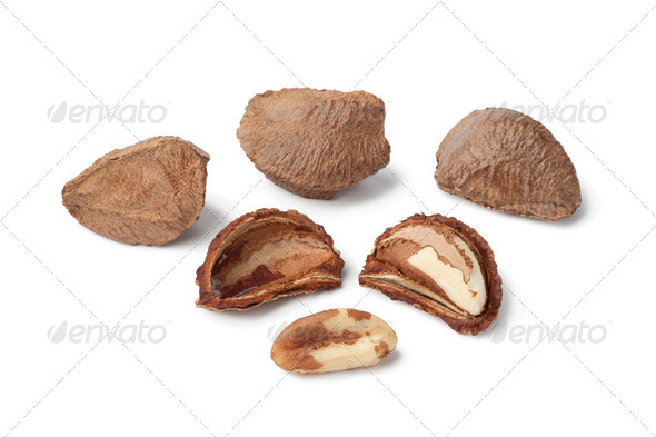 Fresh Brazil nuts - Stock Photo - Images
