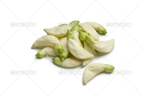 Dok Kae edible flowers - Stock Photo - Images