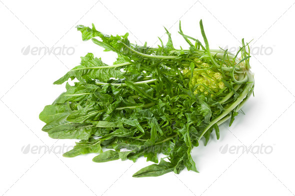 Fresh Puntarelle vegetable - Stock Photo - Images