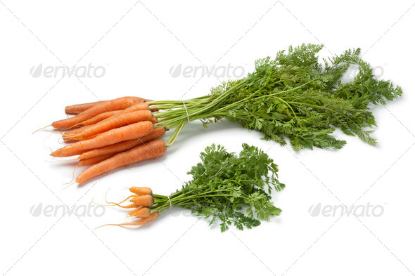 Fresh baby carrots  and large ones - Stock Photo - Images