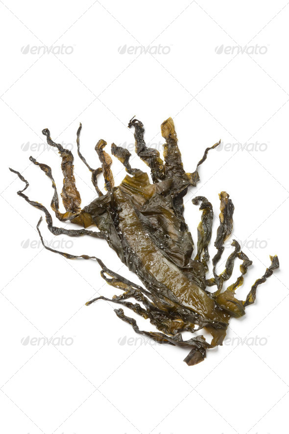 Wakame seaweed - Stock Photo - Images