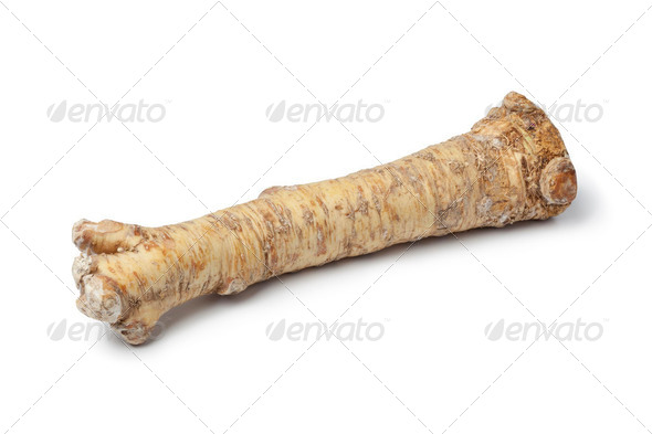 Fresh Horseradish - Stock Photo - Images