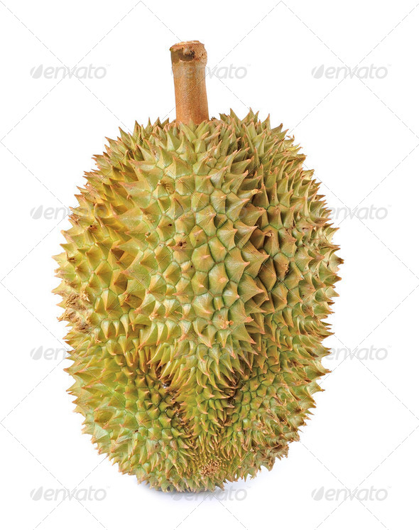 durian isolated on white background - Stock Photo - Images