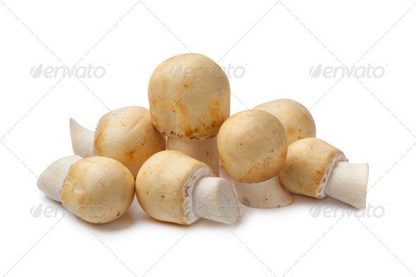 Fresh Horse Mushroom - Stock Photo - Images